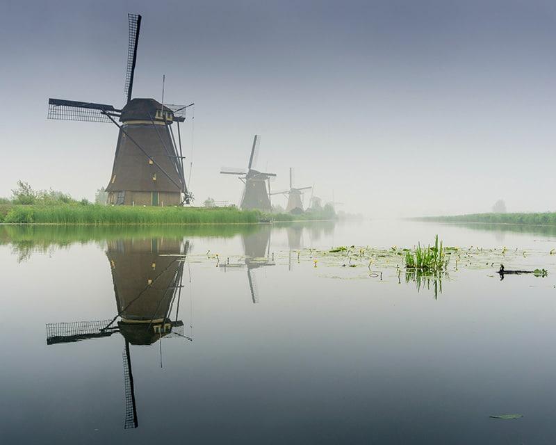 Expat Tax Netherlands