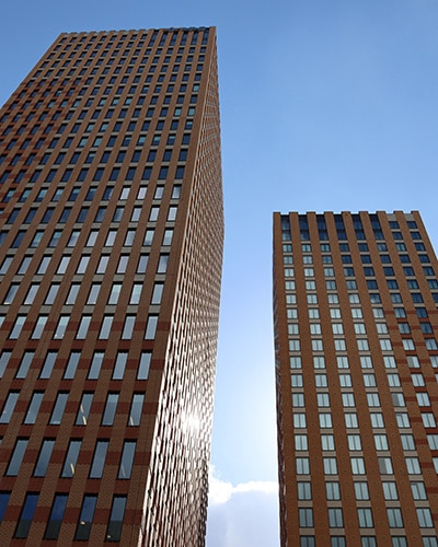 Opening a branch office in the netherlands